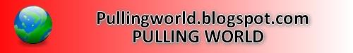 Pulling World